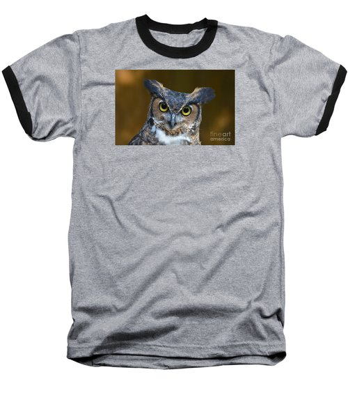 Great Horned Owl Portrait Baseball T-Shirt by Kathy Baccari