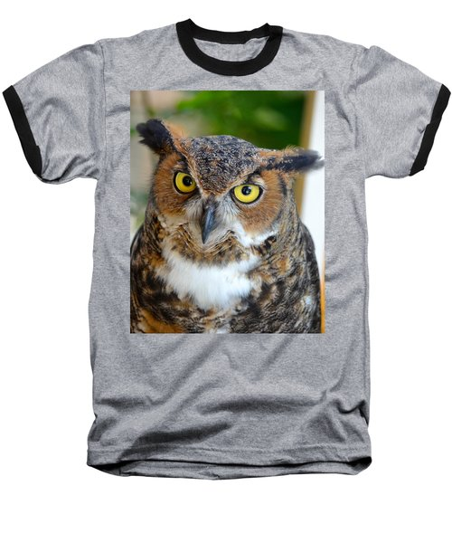 Great Horned Owl  Baseball T-Shirt by Richard Bryce and Family