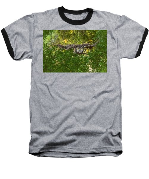 Great Horned Owl Take Off Baseball T-Shirt by Marc Crumpler