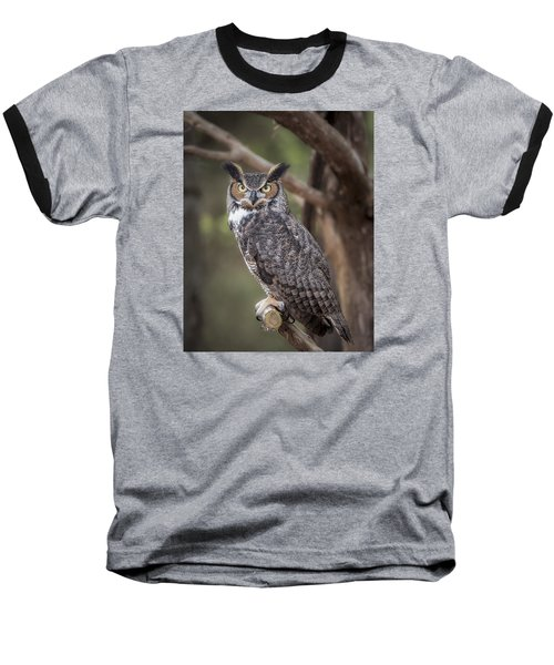 Great Horned Owl Baseball T-Shirt by Tyson and Kathy Smith