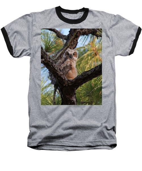 Great Horned Owlet Baseball T-Shirt