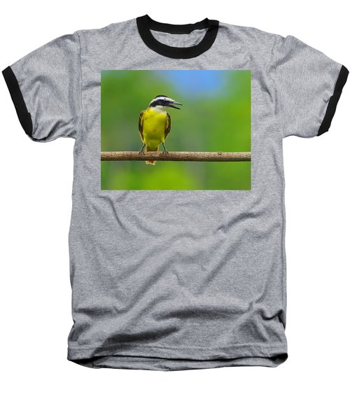 Great Kiskadee Baseball T-Shirt
