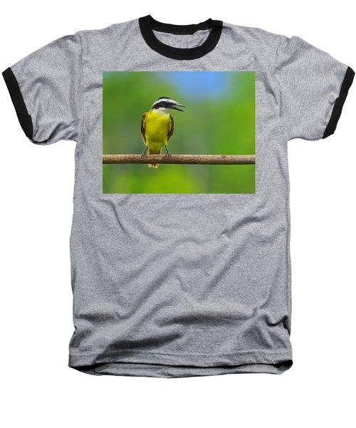 Great Kiskadee Baseball T-Shirt by Tony Beck