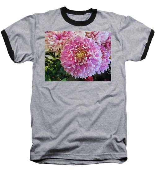 Great Pleasure Baseball T-Shirt