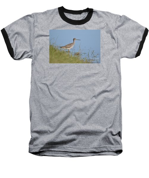 Greater Yellowlegs Baseball T-Shirt by Kathy Gibbons