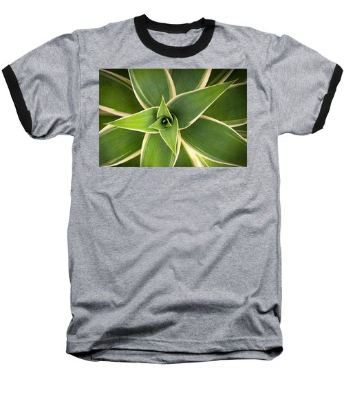 Green Agave Baseball T-Shirt by Catherine Lau