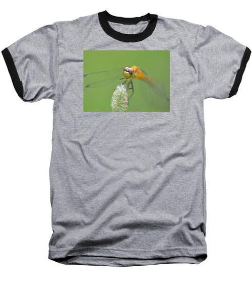 Green Angles Baseball T-Shirt by Janet Rockburn