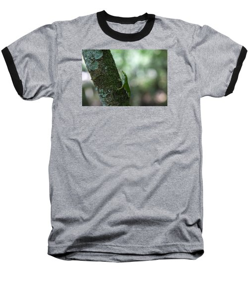 Green Anole Baseball T-Shirt by Christopher L Thomley