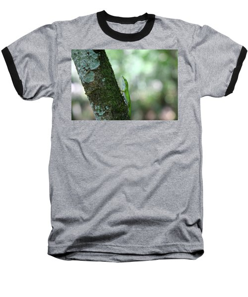 Green Anole Climbing Baseball T-Shirt by Christopher L Thomley