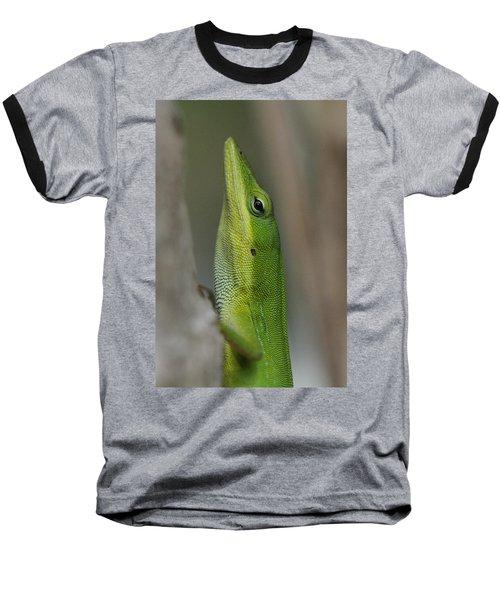 Green Anole Baseball T-Shirt by Doris Potter