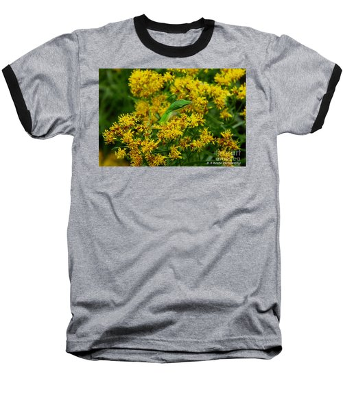 Green Anole Hiding In Golden Rod Baseball T-Shirt