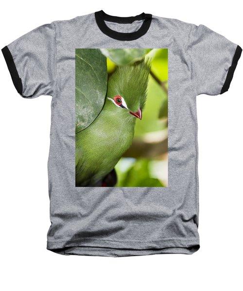 Green Turaco Bird Portrait Baseball T-Shirt