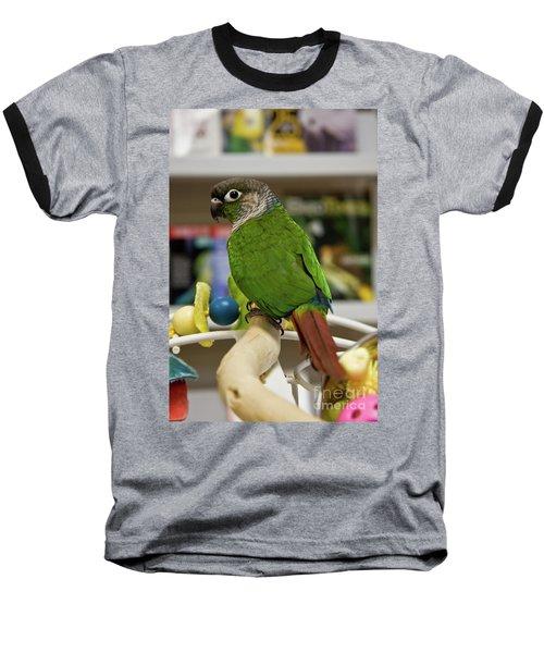 Green Cheek Conure Baseball T-Shirt