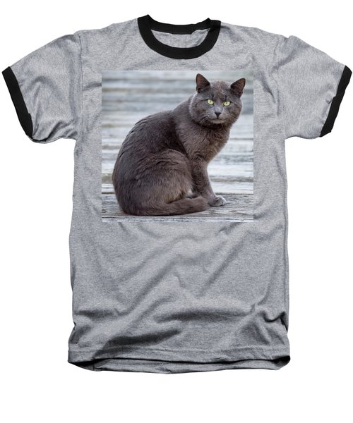 Baseball T-Shirt featuring the photograph Green Eye Stare Cat Square by Terry DeLuco