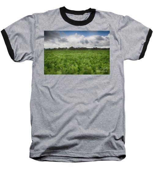 Green Fields 4 Baseball T-Shirt by Douglas Barnard