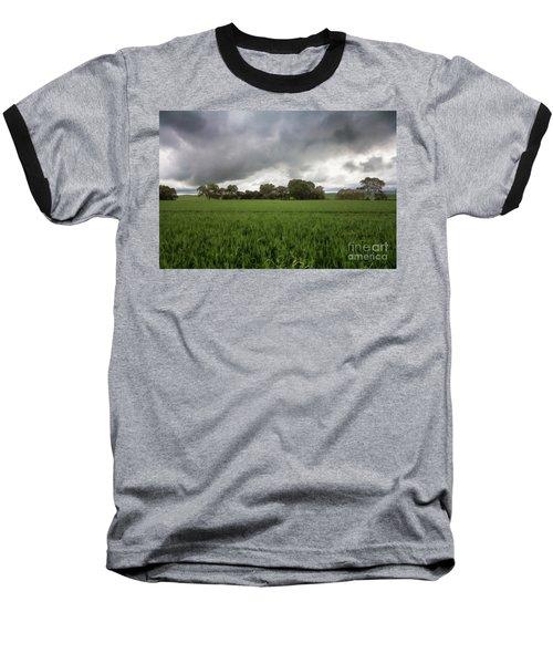 Green Fields 5 Baseball T-Shirt by Douglas Barnard