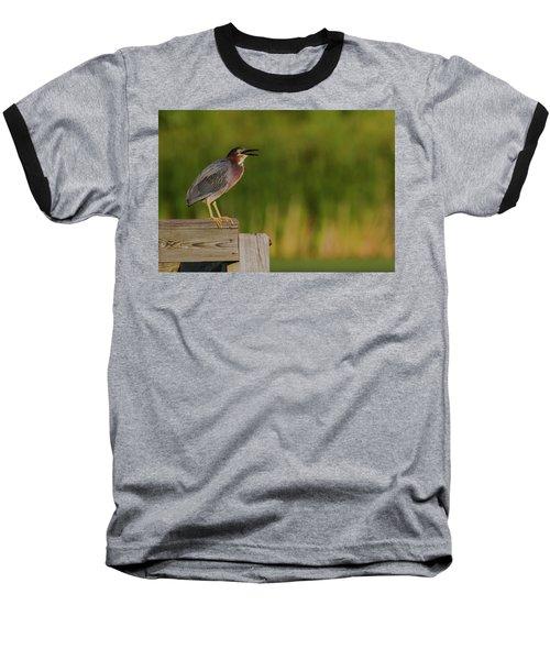 Green Heron Evening Baseball T-Shirt