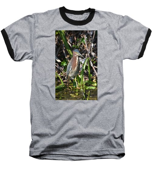 Green Heron Everglades Baseball T-Shirt