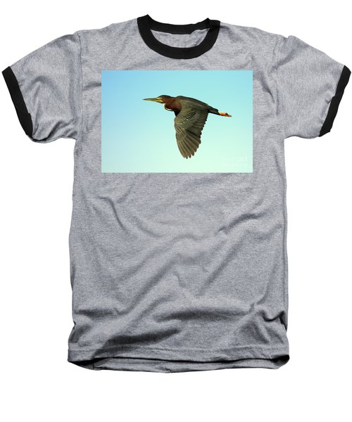 Green Heron Flight Baseball T-Shirt by Myrna Bradshaw