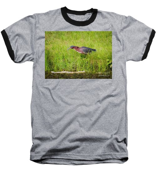Baseball T-Shirt featuring the photograph Green Heron On The Hunt by Ricky L Jones
