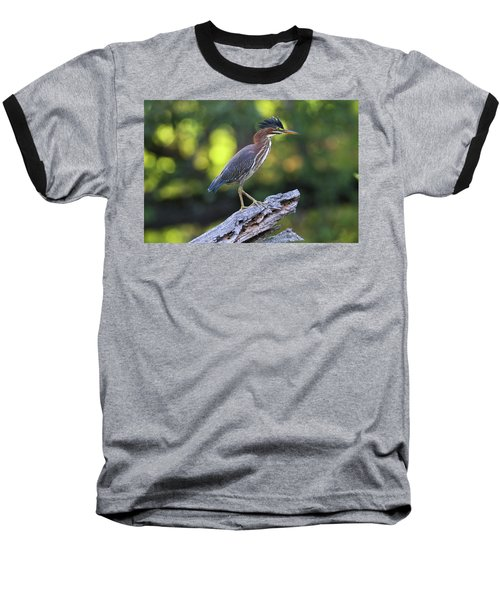 Green Heron Stump Baseball T-Shirt