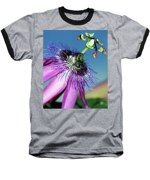 Green Hover Fly On Passion Flower Baseball T-Shirt