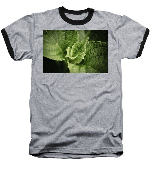 Baseball T-Shirt featuring the photograph Green Leaves Abstract II by Marco Oliveira