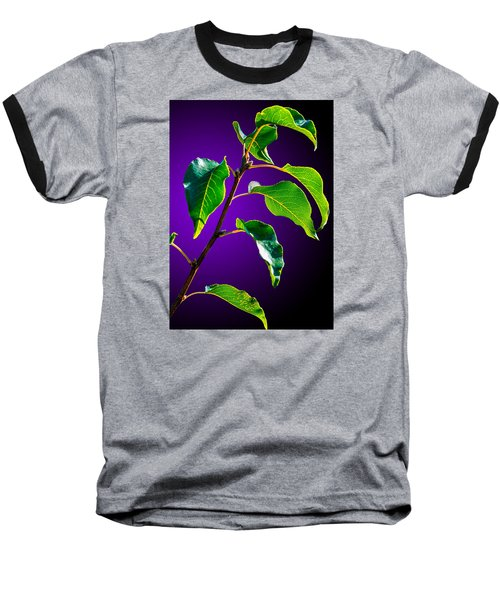 Green Leaves Baseball T-Shirt by Brian Stevens