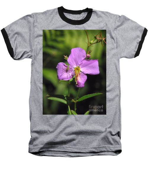Green Lynx Spider On Meadow Beauty Baseball T-Shirt