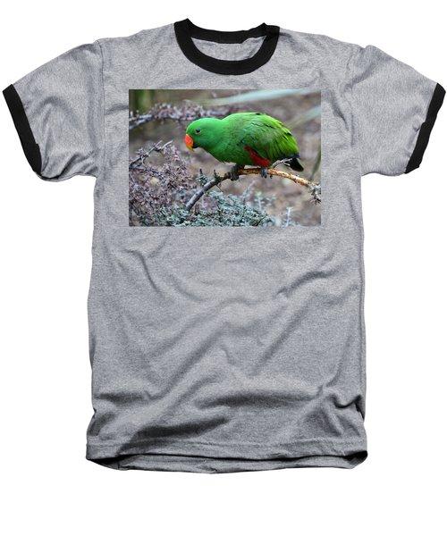 Green Male Eclectus Parrot Baseball T-Shirt