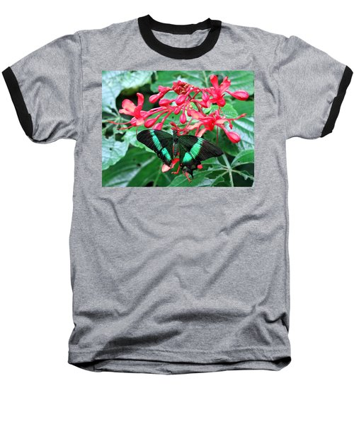 Green Moss Peacock Butterfly Baseball T-Shirt