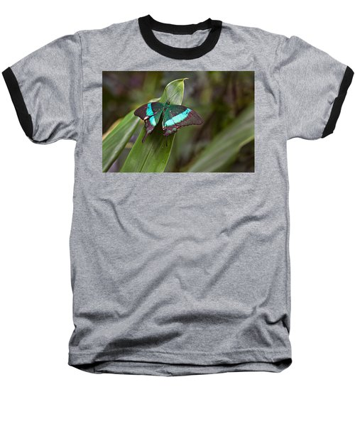 Baseball T-Shirt featuring the photograph Green Moss Peacock Butterfly by Peter J Sucy
