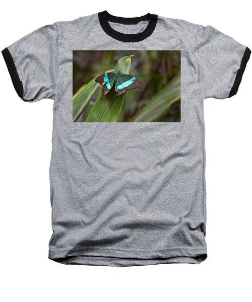 Green Moss Peacock Butterfly Baseball T-Shirt by Peter J Sucy