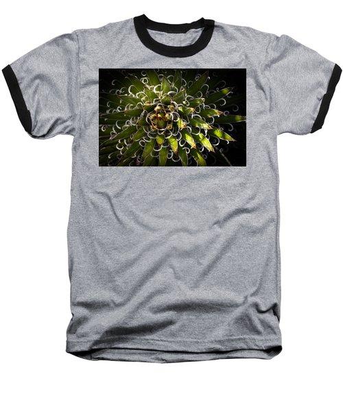 Green Plant Baseball T-Shirt by Catherine Lau