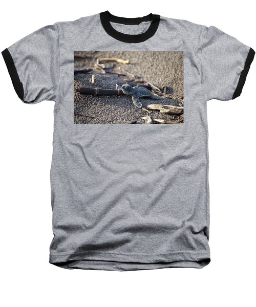 Baseball T-Shirt featuring the photograph Green Sea Turtle Hatchling by Breck Bartholomew