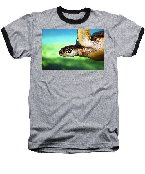 Green Sea Turtle Baseball T-Shirt by Marilyn Hunt