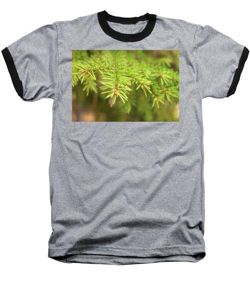 Green Spruce Branch Baseball T-Shirt by Anton Kalinichev