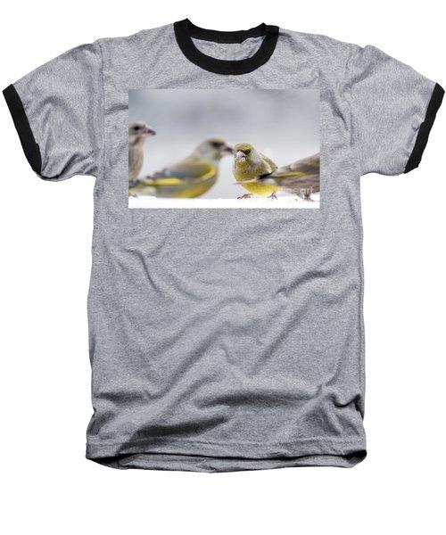 Greenfinches Baseball T-Shirt