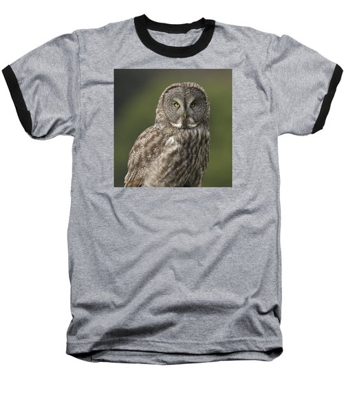 Baseball T-Shirt featuring the photograph Great Gray Owl Portrait by Doug Herr