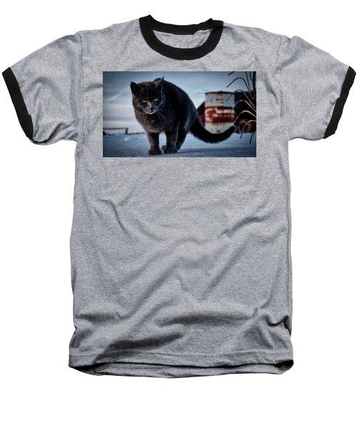 Grey Cat, Grey Mood Baseball T-Shirt
