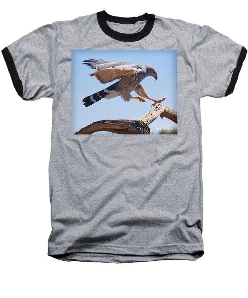 Baseball T-Shirt featuring the photograph Grey Hawk Alights by Martin Konopacki