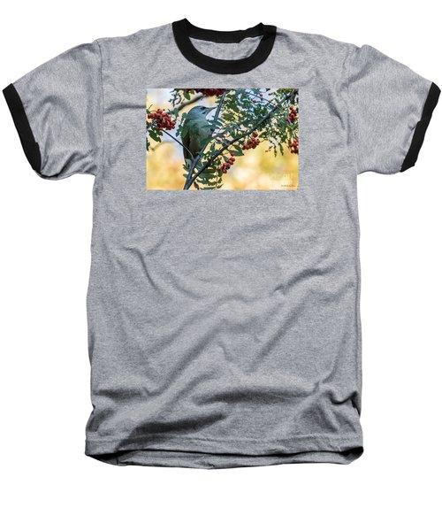 Grey Headed Woodpecker Female Baseball T-Shirt by Jivko Nakev