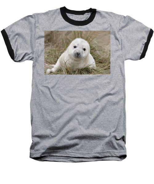 Grey Seal Pup Baseball T-Shirt