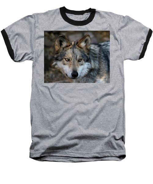 Grey Wolf Baseball T-Shirt