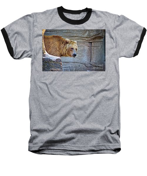 Grizzly Bear Baseball T-Shirt