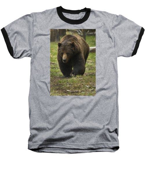 Grizzly Boar-signed-#7914 Baseball T-Shirt by J L Woody Wooden