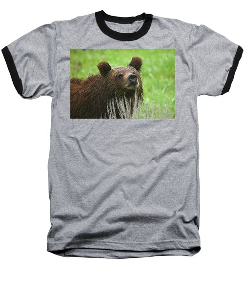 Baseball T-Shirt featuring the photograph Grizzly Cub by Steve Stuller