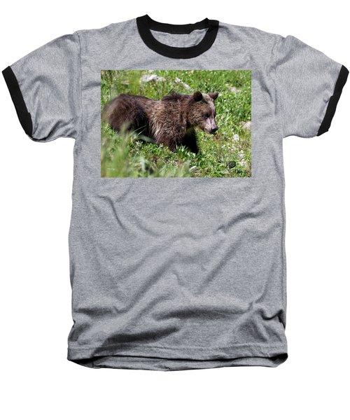 Grizzly Cub  Baseball T-Shirt