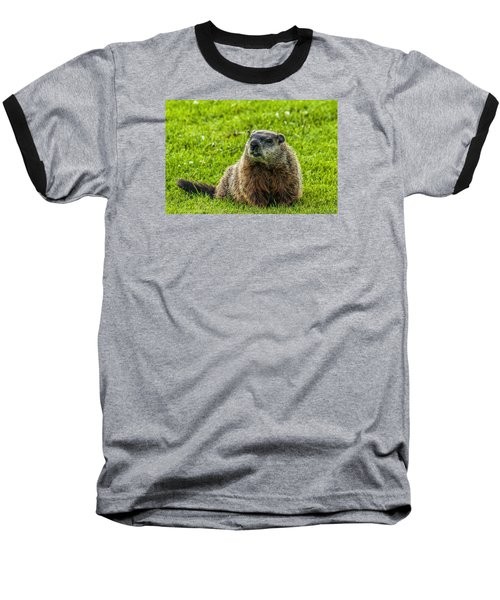 Ground Hog Baseball T-Shirt