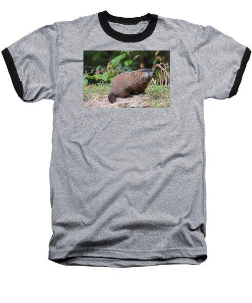 Groundhog  0590 Baseball T-Shirt by Jack Schultz